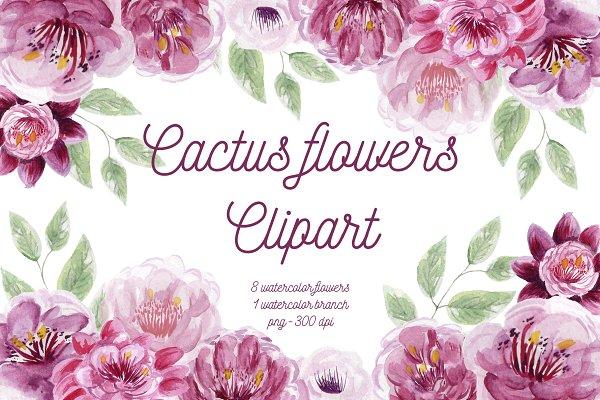 Cactus Flowers Set Clipart