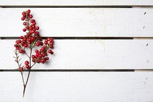 nandian christmas, branck with red b