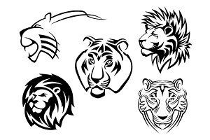 Wild lions, tigers and panthers