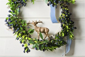 Christmas green wreath of evergreen