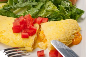 cheese omelette and salad 33.jpg