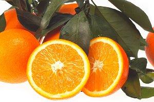 fresh orange 03.jpg