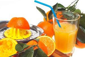 fresh orange 06.jpg