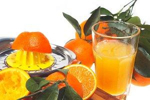 fresh orange 05.jpg