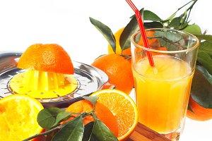 fresh orange 07.jpg