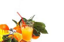 fresh orange 08.jpg