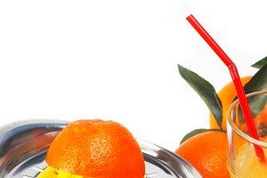 fresh orange 11.jpg