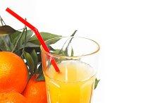 fresh orange 14.jpg