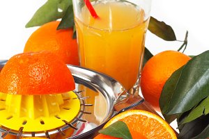 fresh orange 13.jpg