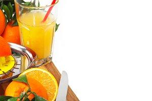 fresh orange 17.jpg