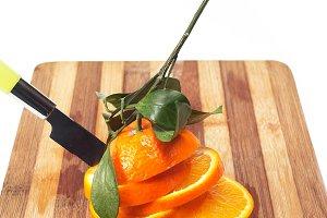 fresh orange 19.jpg