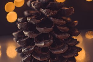 Wooden cob and bokeh lights