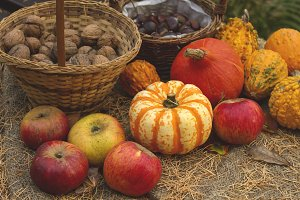 organic autumn goods