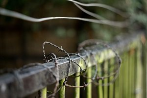 Fence and Wires