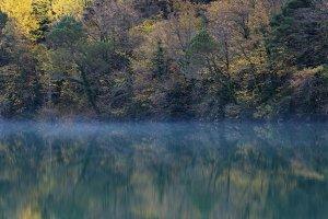 Late autumn mist