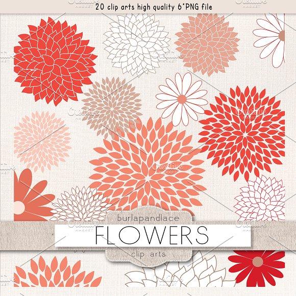 Flowers Clipart Illustrations Creative Market