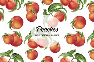 Watercolor peaches collection