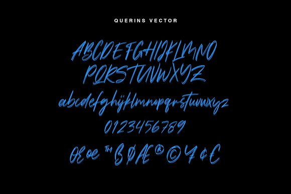 Querins SVG Brush Font in Display Fonts - product preview 7