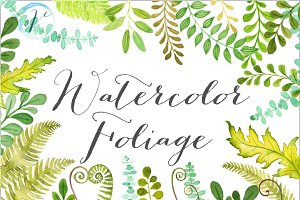 Watercolor Foliage
