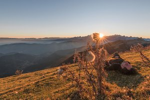 Sunset in the grassy hills in autumn
