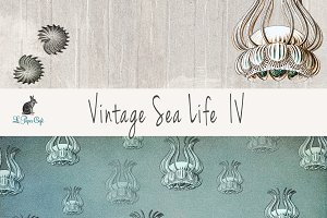 Vintage Sea Life IV Papers