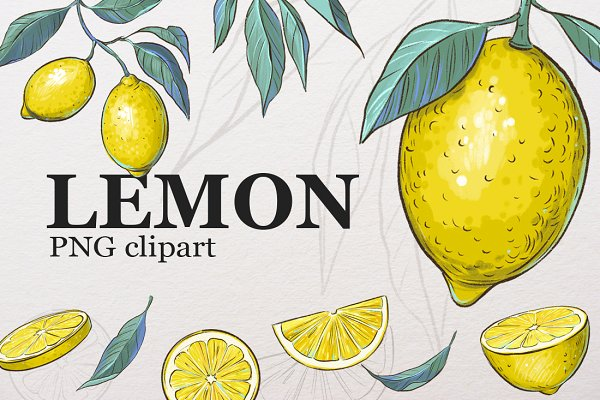 Lemon Clipart Pre Designed Photoshop Graphics Creative Market Clipart can be used for business, education, artwork. lemon clipart pre designed photoshop