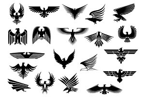 Heraldic eagles, falcons and hawks
