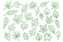 Green leaves set in outline style
