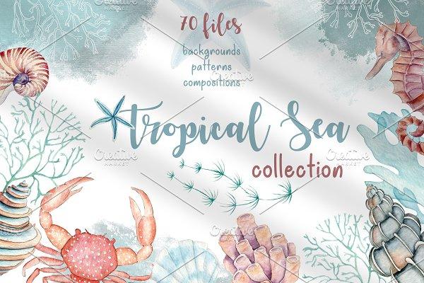 Tropical Sea Collection