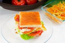 club sandwich 6.jpg