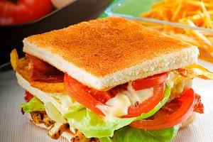 club sandwich 8.jpg