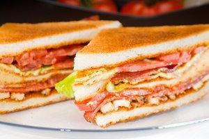 club sandwich 20.jpg