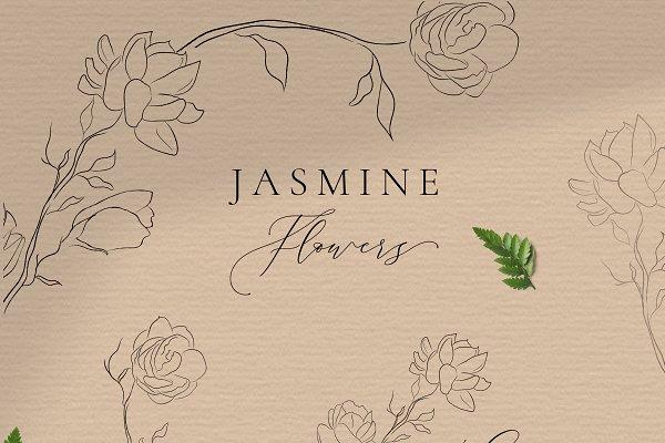 Jasmine Flowers Line Art Elements