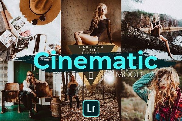 Cinematic Mood LR Mobile Presets