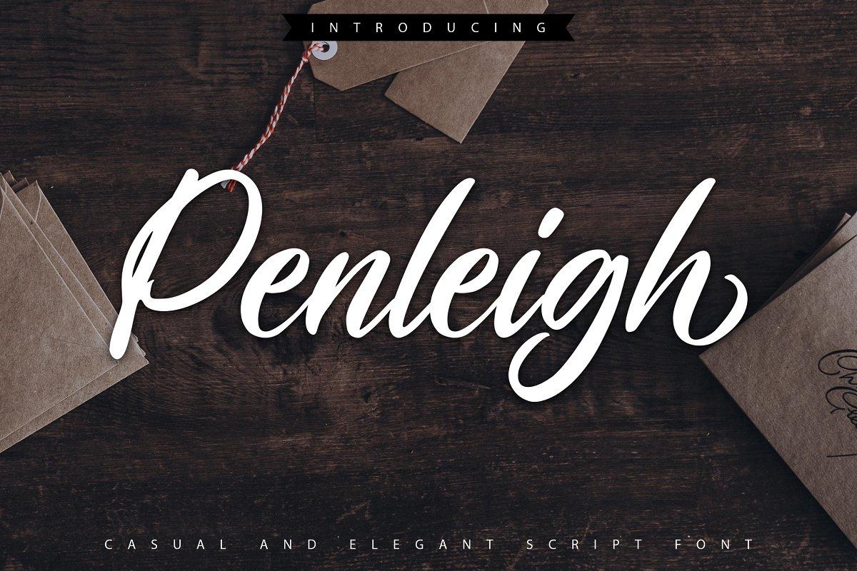 Penleigh   Casual & Elegant Script in Script Fonts - product preview 8