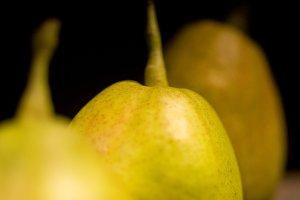 pears 6.jpg