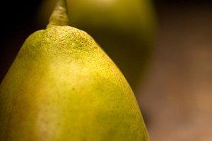 pears 7.jpg