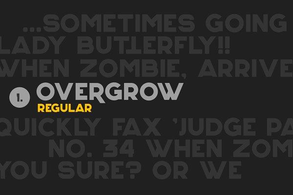 Overgrow Typeface