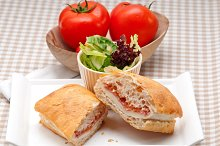 Parma ham cheese and tomato ciabatta sandwich 19.jpg