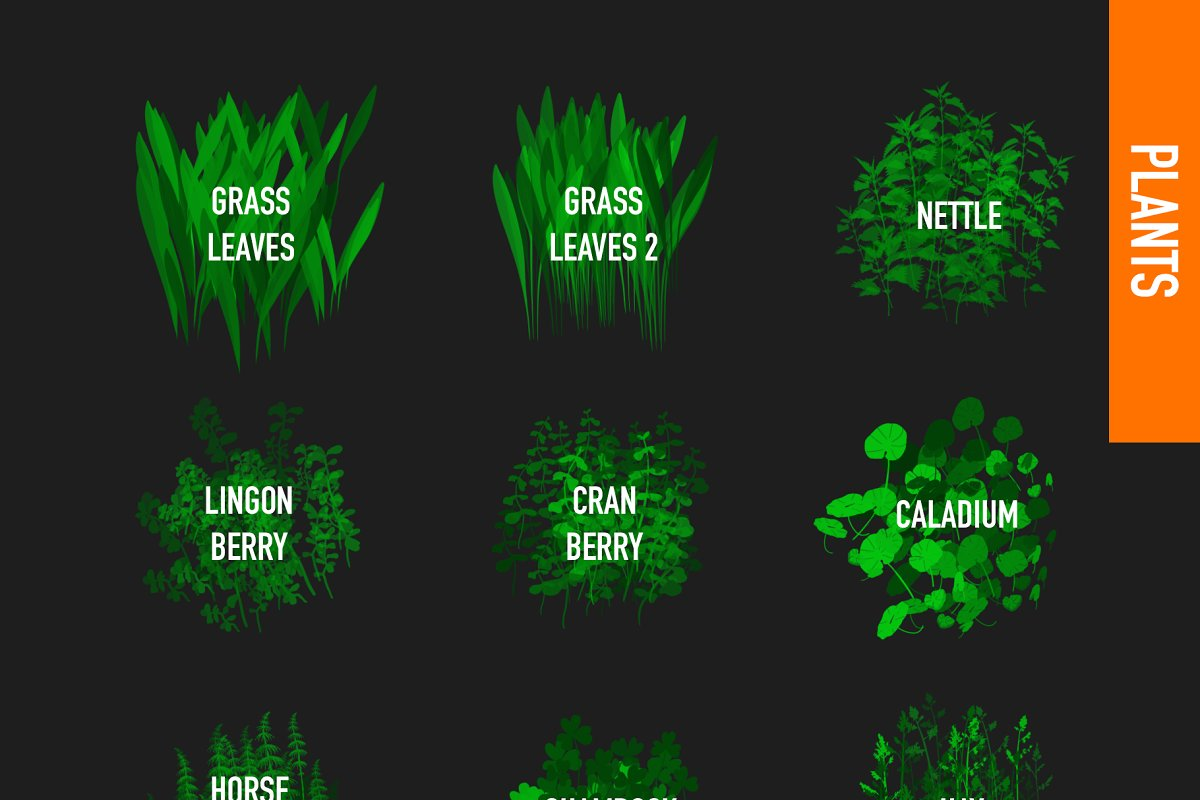 80 FOLIAGE BRUSHES FOR PROCREATE 5 in Add-Ons - product preview 4