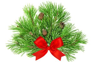 Pine tree branches with red bow