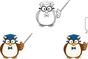 Wise Owl Teacher Collection - 3