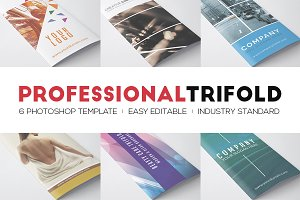 Professional Trifolds Bundle 2