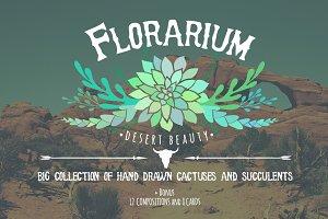 Florarium: succulents & cactuses set