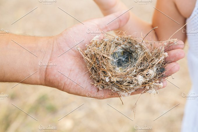 Nest in hand.jpg - Nature