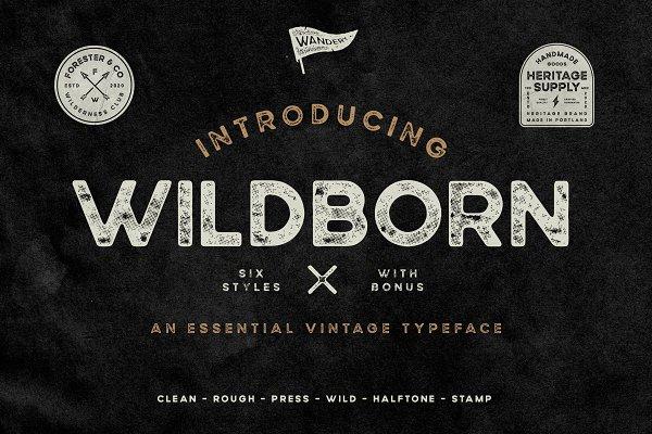 Wildborn Vintage Sans Typeface