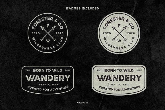 Wildborn Vintage Sans Typeface in Display Fonts - product preview 3