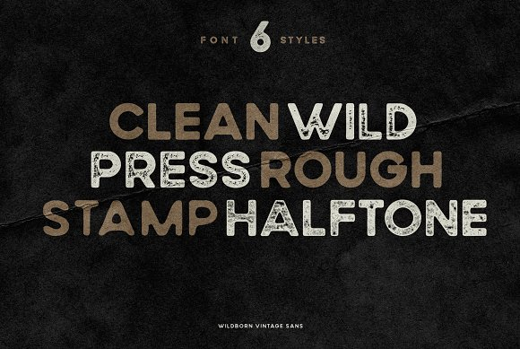 Wildborn Vintage Sans Typeface in Display Fonts - product preview 4