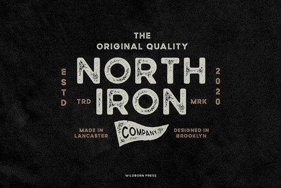 Wildborn Vintage Sans Typeface in Display Fonts - product preview 8