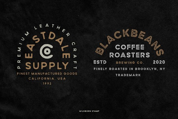 Wildborn Vintage Sans Typeface in Display Fonts - product preview 9